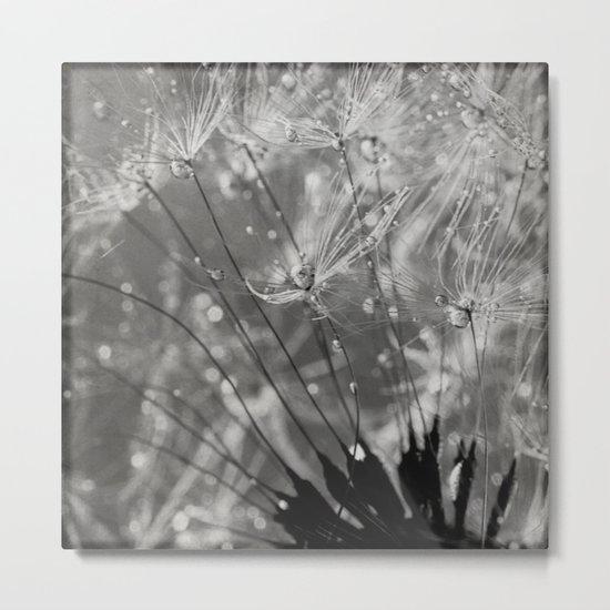 silver tears Metal Print
