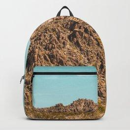 Landscape Joshua Tree 7339 Backpack