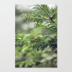 Quelque-chose de vert Canvas Print