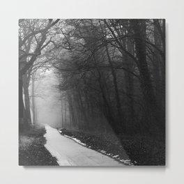 German forest – footpath Metal Print