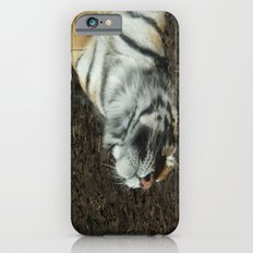Lazy Days Sleeping in the Sun iPhone 6s Slim Case