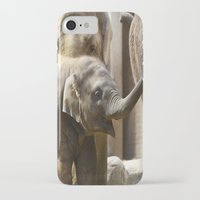 baby elephant iPhone & iPod Cases featuring Baby Elephant by Päivi Vikström