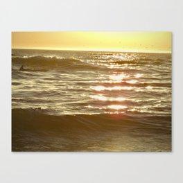 Golden Sparkling Sea-Dolphin Fin Canvas Print