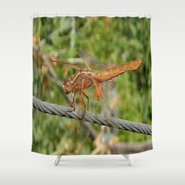 Female Red Skimmer Dragonfly Shower Curtain