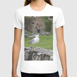 Seagull. T-shirt