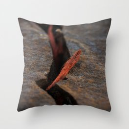 Crevice Throw Pillow