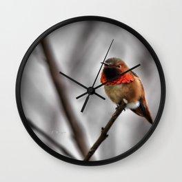Allen's Hummingbird. © J. Montague. Wall Clock