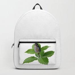 Hīragi iwashi(柊鰯) Backpack