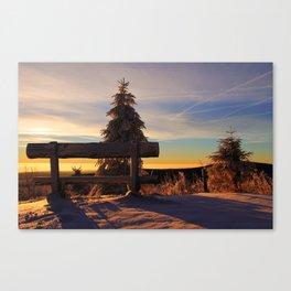 Winter views Canvas Print