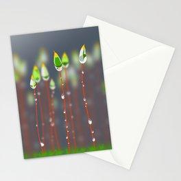 Calyptrae & dew Stationery Cards