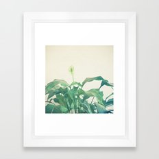 Peace Lily Framed Art Print