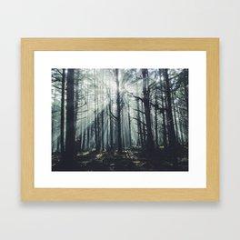 Oregon Coast Fog Framed Art Print