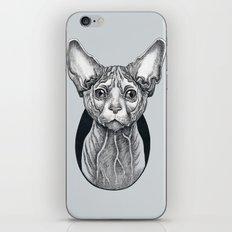 Sphynx cat iPhone & iPod Skin