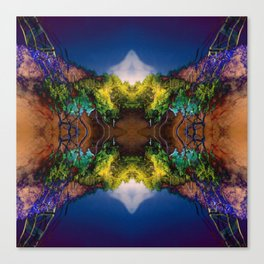 Acid-land. Canvas Print