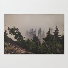 Mountaintop Forest Canvas Print
