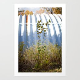 HOME: EARLY OCTOBER, ONE  Art Print