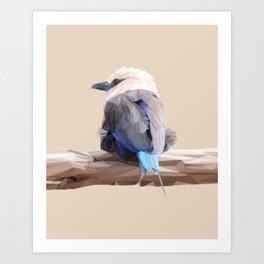 Poly Blue-bellied Roller Art Print