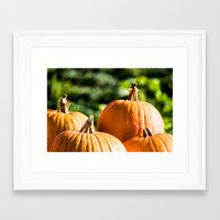 vegetable Framed Art Prints featuring  autumn vegetable by Karl-Heinz Lüpke