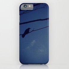 Bird on tree iPhone 6s Slim Case