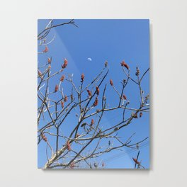sumac moon Metal Print