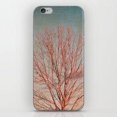 Otoñal iPhone & iPod Skin