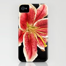 Stargazer iPhone (4, 4s) Slim Case