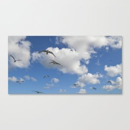 Flock of Seaguls Canvas Print
