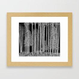Ode to Ansel I Framed Art Print