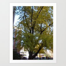 AMAZING TREE Art Print