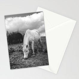 White Pony Stationery Cards