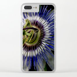 Macro photo of flower of passion Clear iPhone Case