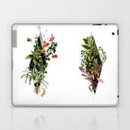In Between Laptop & iPad Skin