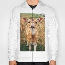 Baby Deer Hoody