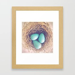 Blue Eggs Framed Art Print