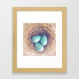 Blue Eggs Framed Art Print