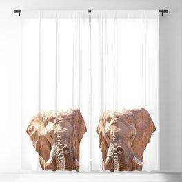Elephant illustration Blackout Curtain