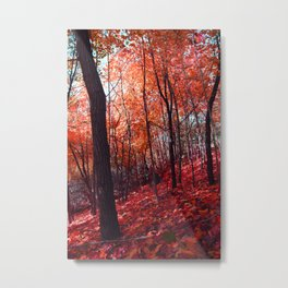 PINK FROST 1 Metal Print