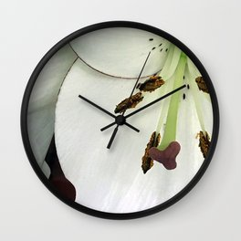 Pearl-Alabaster Star Lily Close-Up, Macro Photo Wall Clock