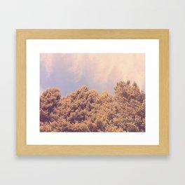 taken by trees Framed Art Print