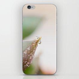 April Showers iPhone Skin