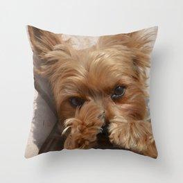Put Em' Up - The Yorkie Dog Throw Pillow