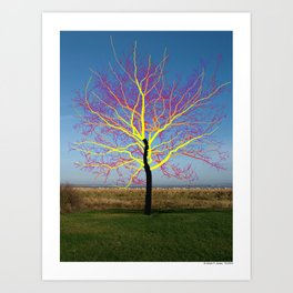 Onetree 02 Art Print