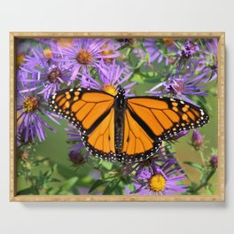 Monarch Butterfly on Wild Asters (square) Serving Tray