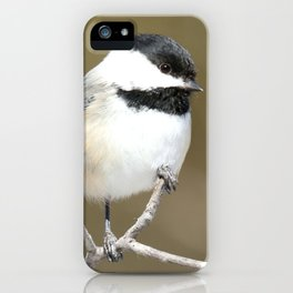 The finer points iPhone Case