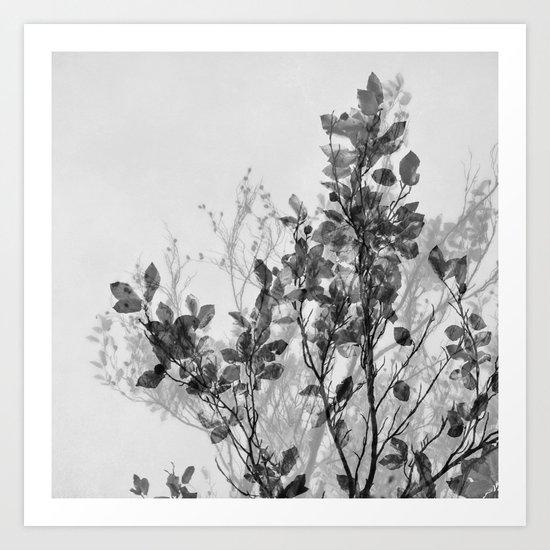 autumn symphonies VII Art Print