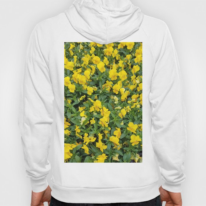 Flowers, Yellow Flowers, Bouquet Hoody