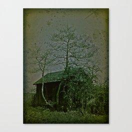 #38 Canvas Print