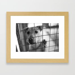 What About Me? Framed Art Print