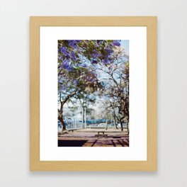 Jacarandas Framed Art Print