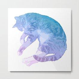 Gorgeous Pastel Cat Image Metal Print
